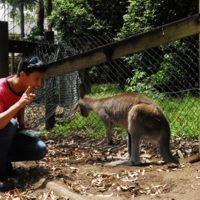Mark and Kangaroo in Australia.JPG